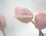 maxramy